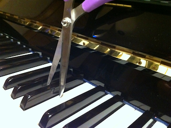 Songwriting & Editing by Melissa Axel