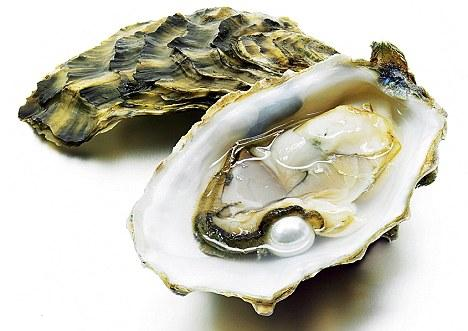 Oysters And Muses